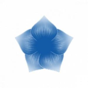 Perfect Nails akril festék 010 kék
