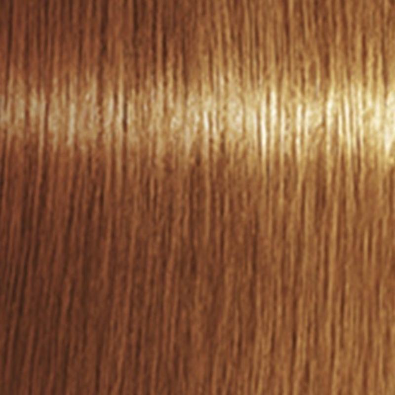 Indola Világosbarna színező hab 200ml (Light Brown Hanzel)